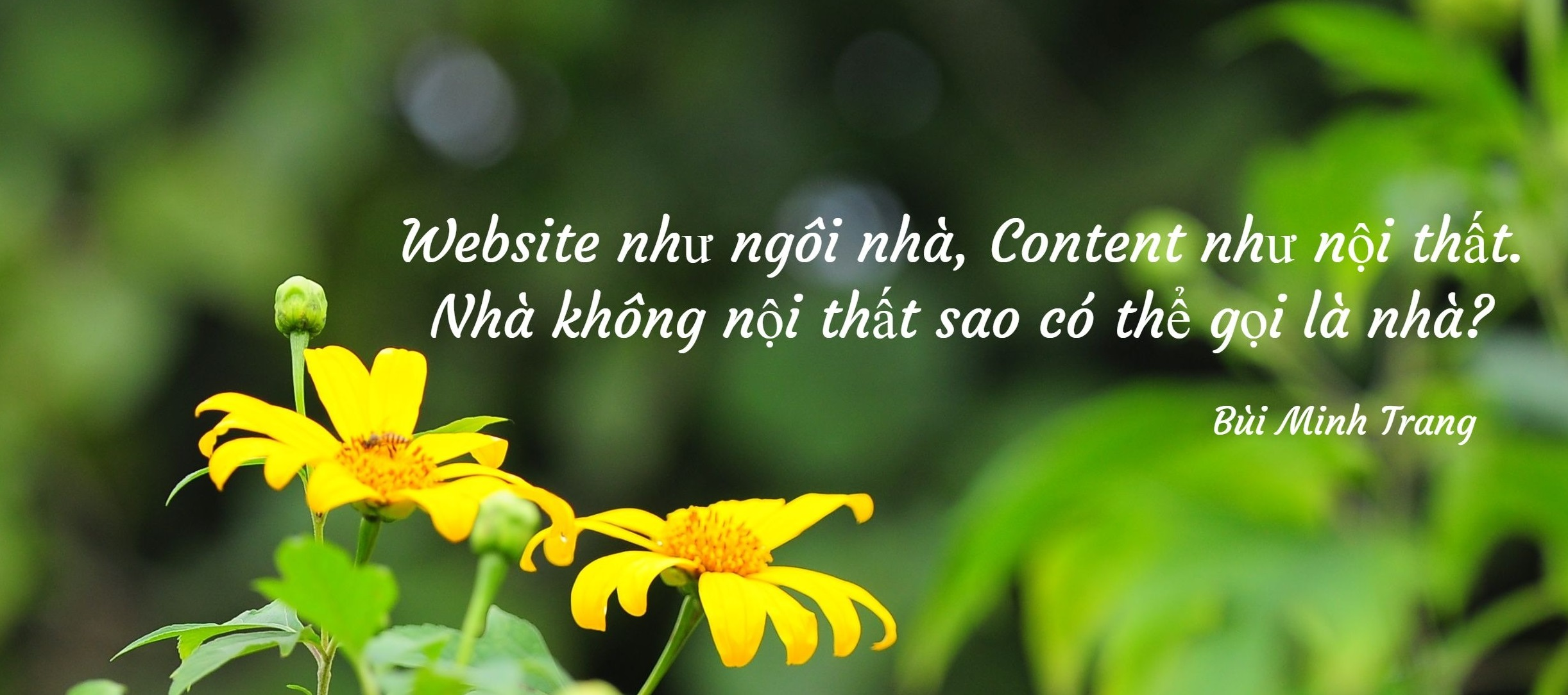 Content Marketing - Nội Thất của 1 website